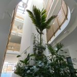 Franklin Klinik Foyer